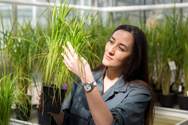 Stella Cesari: 2017 New Phytologist Tansley Medal winner | New Phyt blog