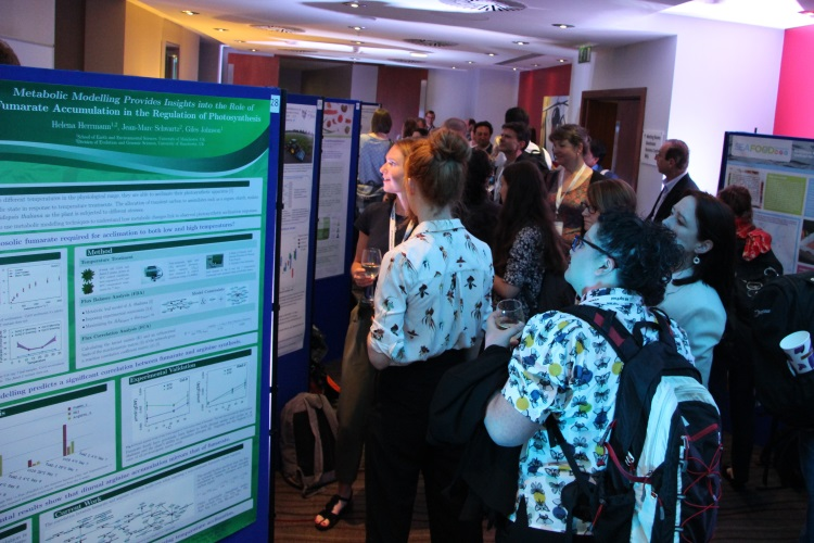 Image: Poster session at the N8 Agrifood Conference in Liverpool. Courtesy of Shane Rothwell.
