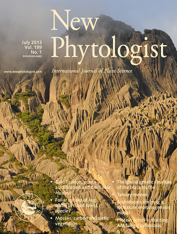 Cover of 199:4 of New Phytologist