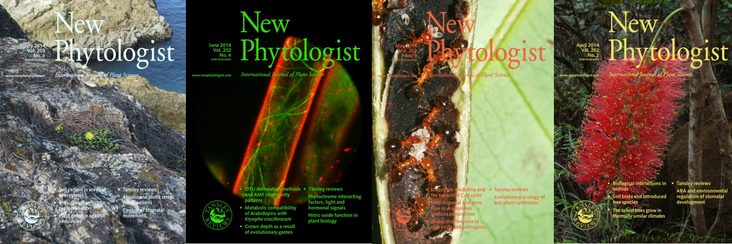 Selected New Phytologist covers from 2014