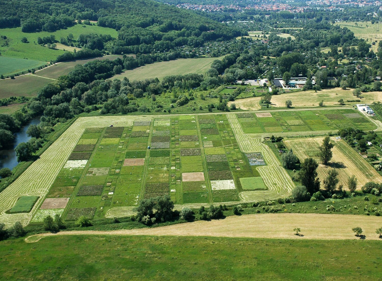 An aerial photograph showing the Jena Biodiversity Experiment in Germany