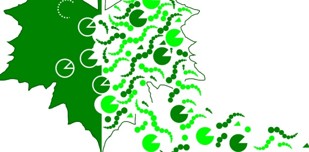 Image: Part of the logo of the 3rd International Conference on Plant Proteases